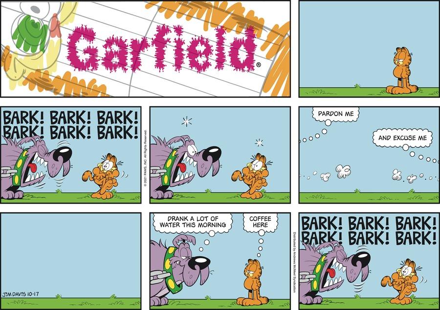 Garfield by Jim Davis on Sun, 17 Oct 2021