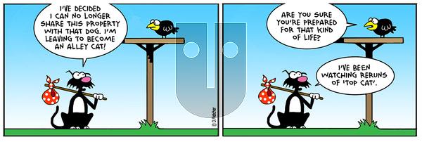 Crumb - Wednesday May 15, 2019 Comic Strip