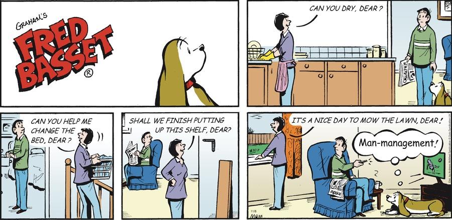 Fred Basset Comic Strip for November 08, 2020