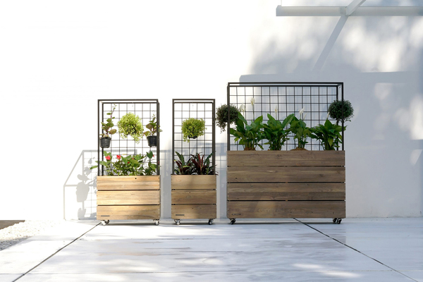 "A cool portable planter from Mamagreen is made of reclaimed teak and powder-coated aluminum. The planters, an addition to the brand's Aiko collection, rest on heavy-duty casters and include a removable powder-coated tin liner. They provide versatile growing options as well as a vertical ""wall"" to define spaces."