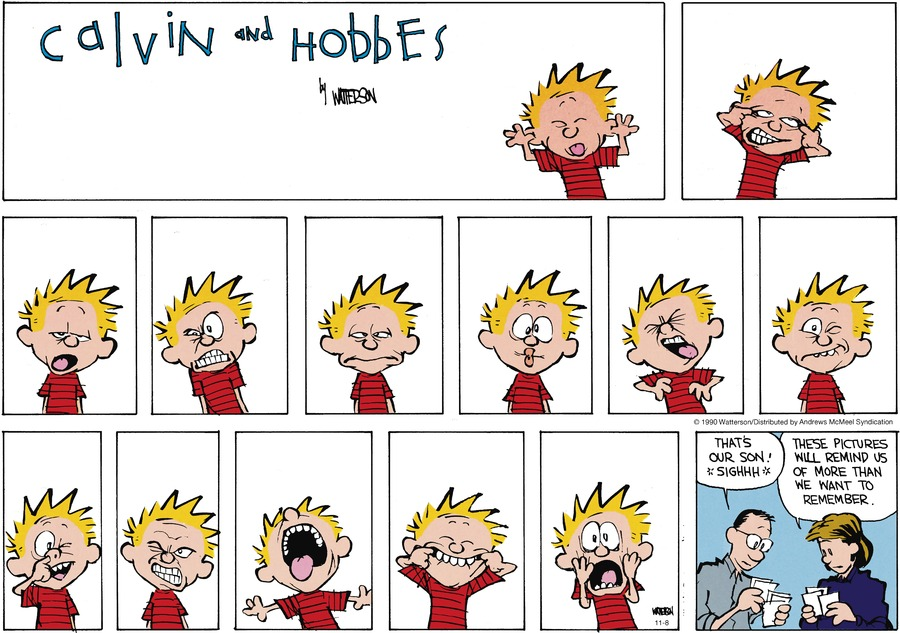 Calvin and Hobbes Comic Strip for November 08, 2020