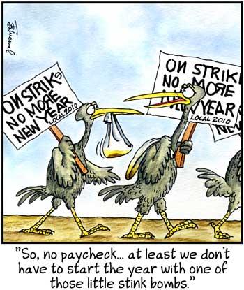 Birdbrains Comic Strip for December 31, 2010