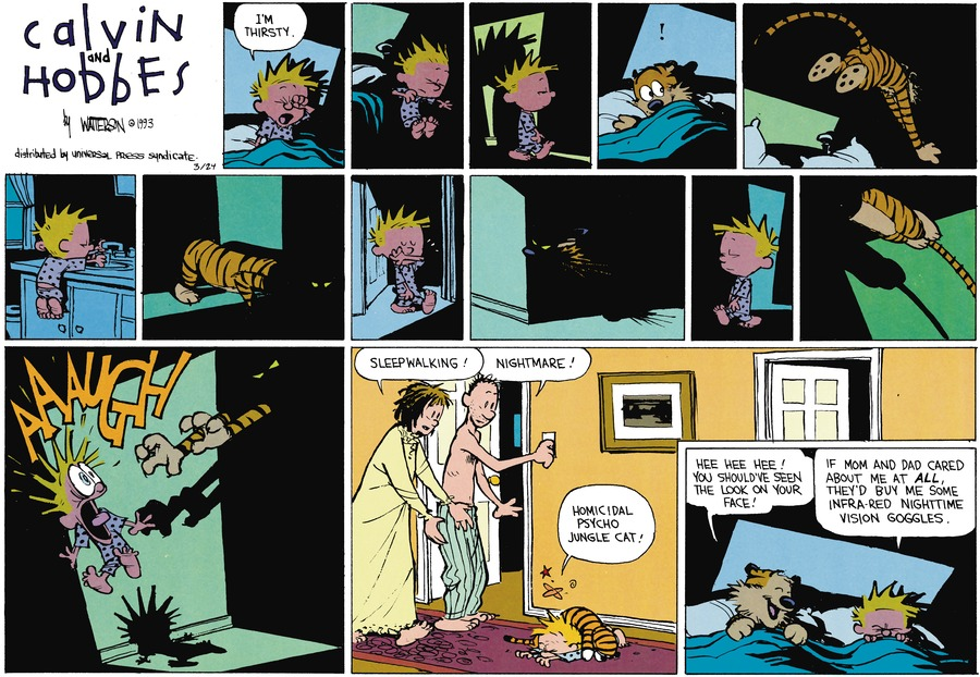 Calvin and Hobbes Comic Strip for March 24, 2013