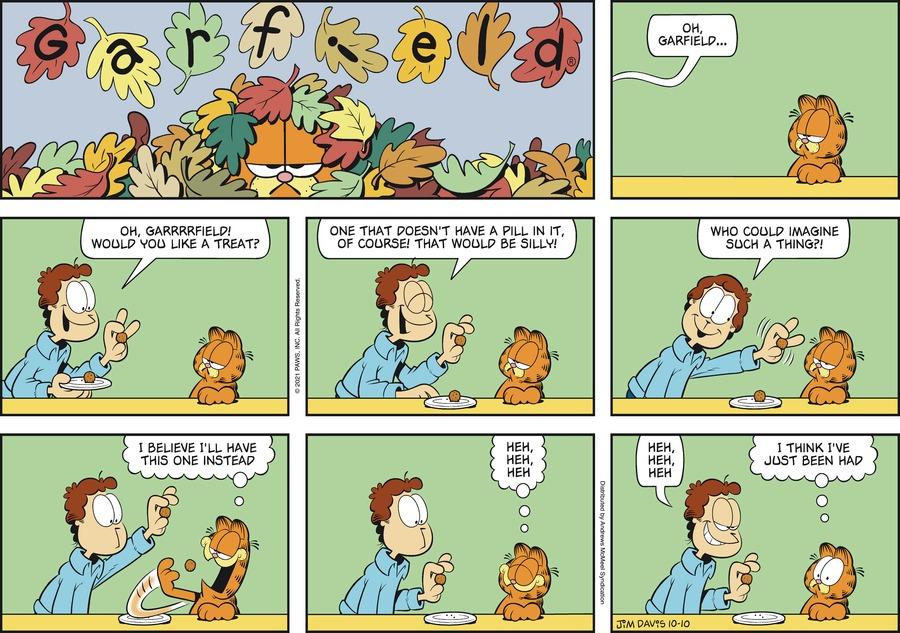 Garfield by Jim Davis on Sun, 10 Oct 2021