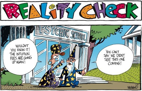 Reality Check on Sunday January 20, 2013 Comic Strip