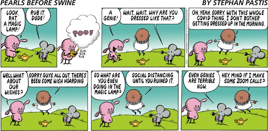 Pearls Before Swine Comic Strip for August 16, 2020