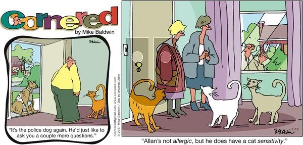 Cornered - Sunday January 15, 2017 Comic Strip