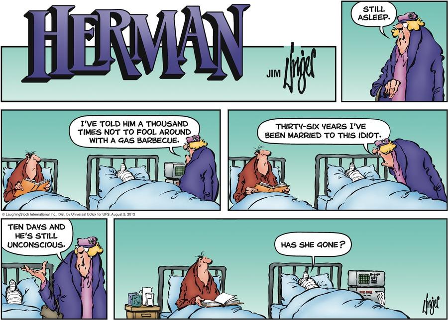 Herman for Aug 5, 2012 Comic Strip