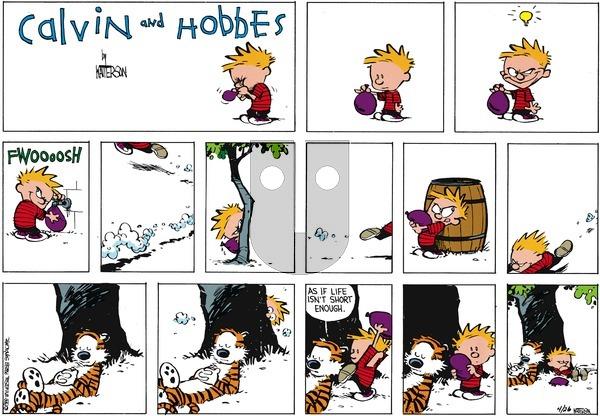 Calvin and Hobbes - Sunday June 5, 1988 Comic Strip