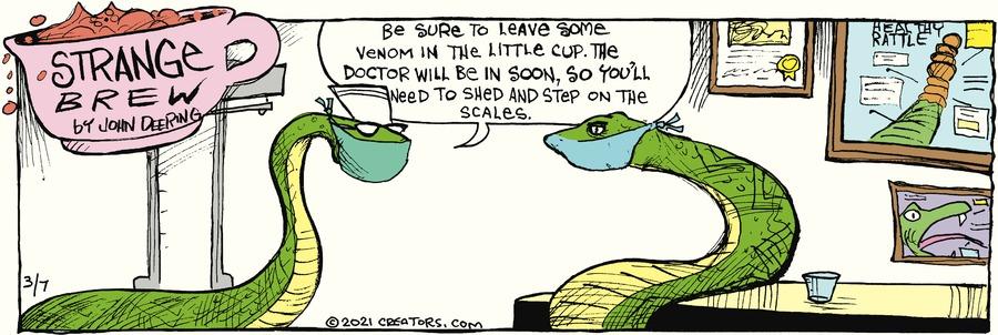 Strange Brew Comic Strip for March 07, 2021