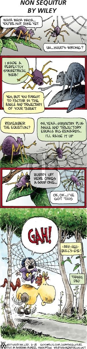 Non Sequitur on Sunday June 18, 2017 Comic Strip