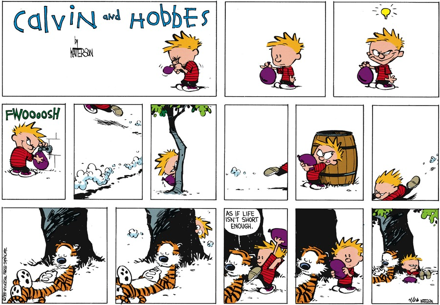 Calvin and Hobbes Comic Strip for June 05, 1988