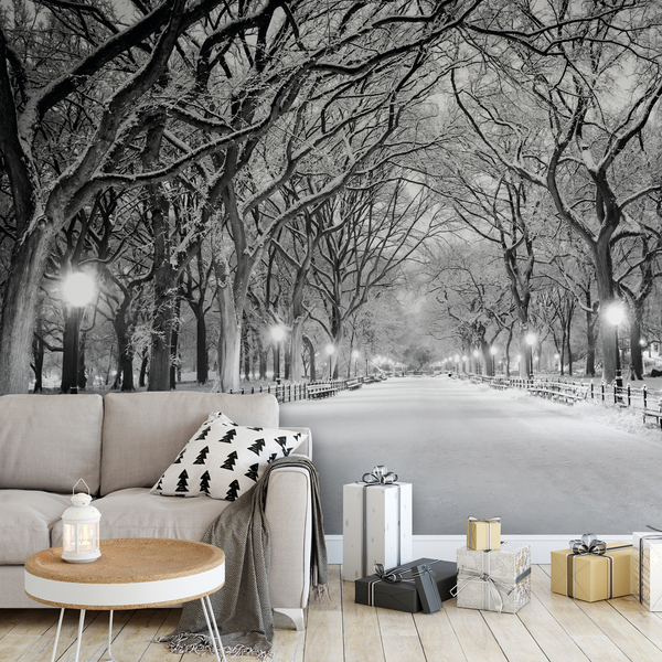 A captivating black-and-white image of a streetlamp-lilt snowy Central Park creates a winter wonderland in your own living room. The peel-and-stick mural is from Wallsauce.