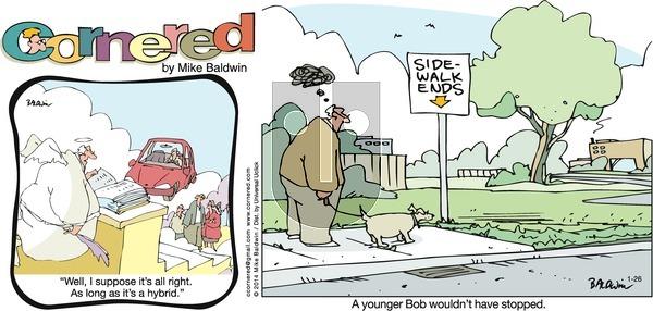 Cornered on Sunday January 26, 2014 Comic Strip