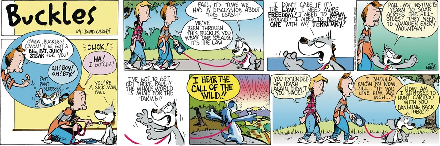 Buckles Comic Strip for August 01, 2021