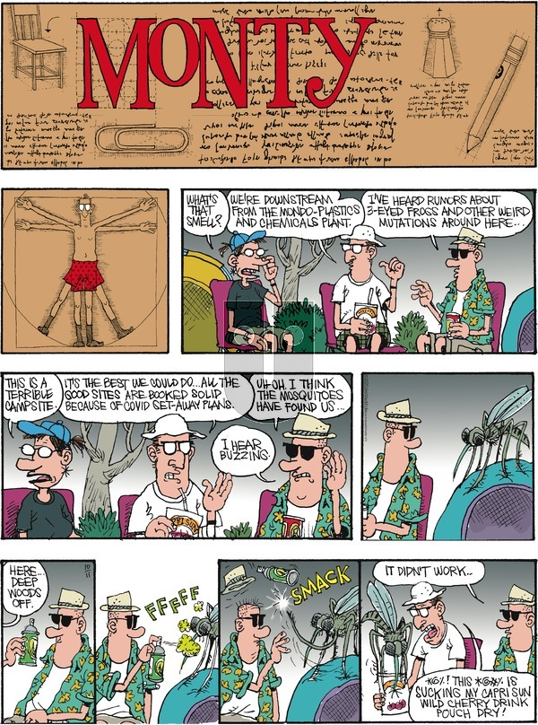 Monty on Sunday October 11, 2020 Comic Strip