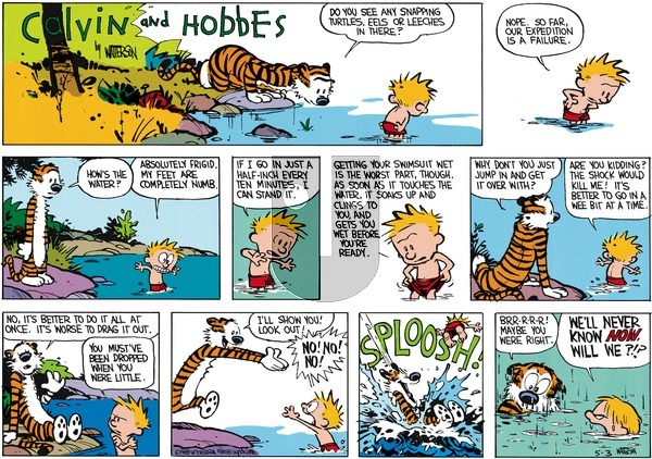 Calvin and Hobbes - Sunday June 12, 1988 Comic Strip