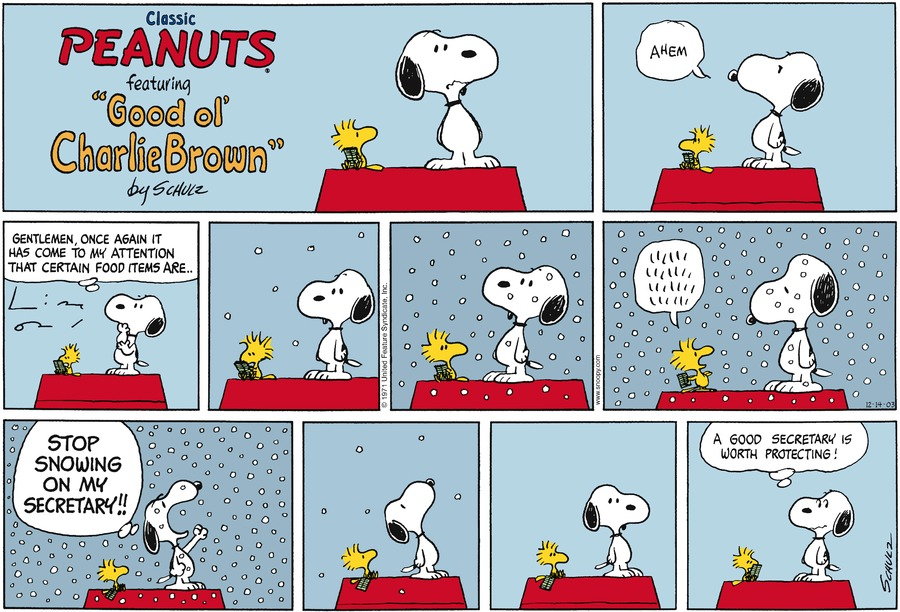 Peanuts Comic Strip for December 14, 2003