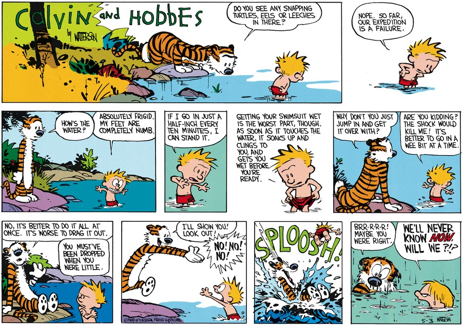 Calvin and Hobbes Comic Strip for June 12, 1988
