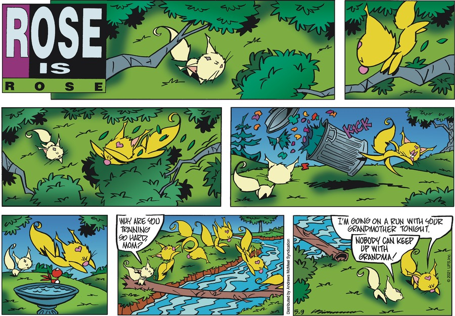 Rose is Rose by Don Wimmer and Pat Brady on Sun, 09 May 2021