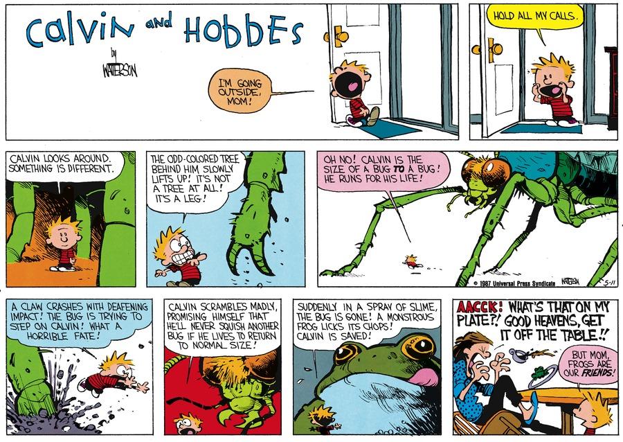 Calvin and Hobbes for Jun 14, 1987 Comic Strip