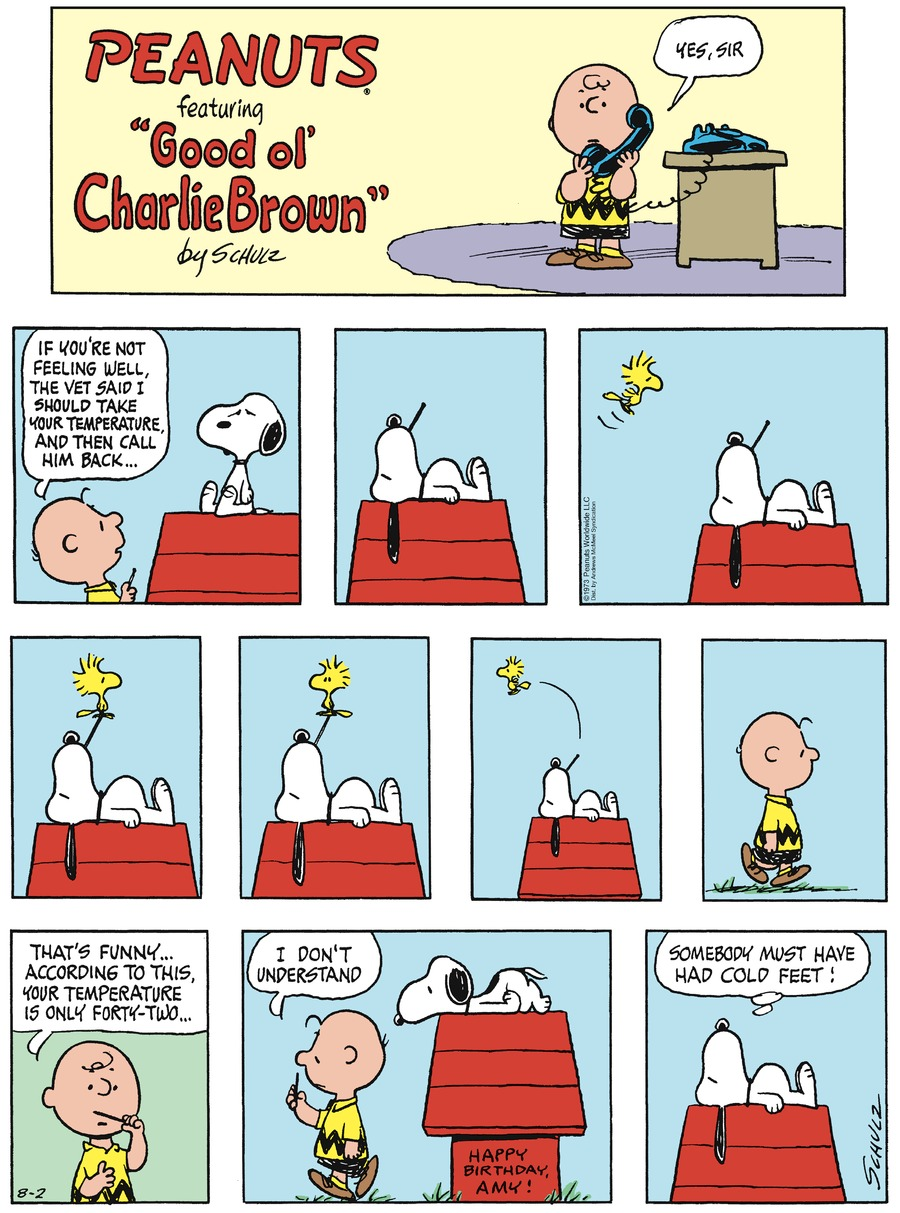 Peanuts Comic Strip for August 02, 2020
