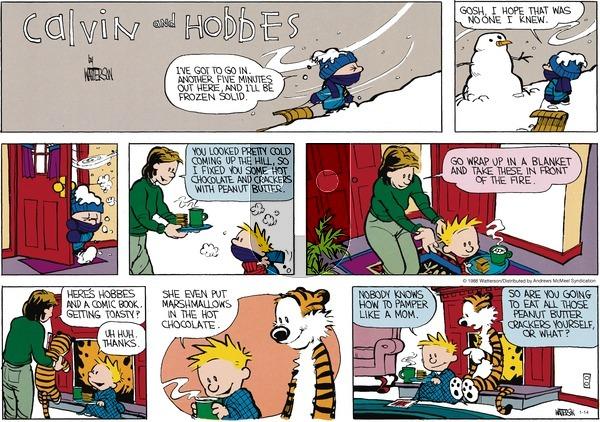 Calvin and Hobbes - Sunday January 14, 2018 Comic Strip