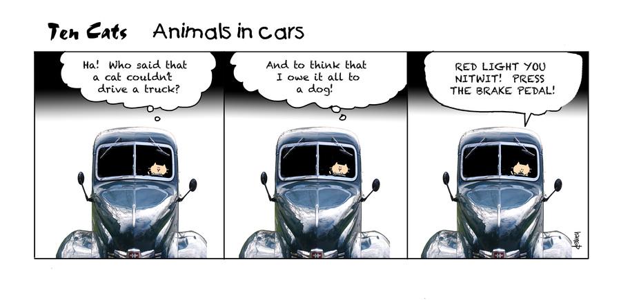 Ten Cats Comic Strip for April 01, 2021
