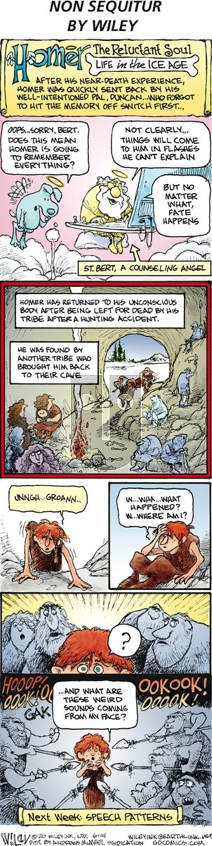 Non Sequitur on Sunday June 14, 2020 Comic Strip
