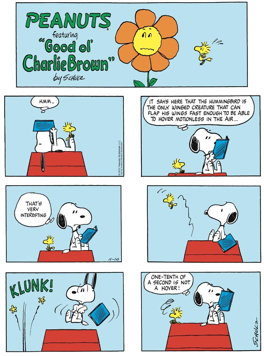 Peanuts Comic Strip for November 10, 2019