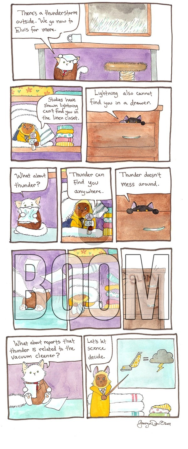 Breaking Cat News on Sunday October 2, 2016 Comic Strip