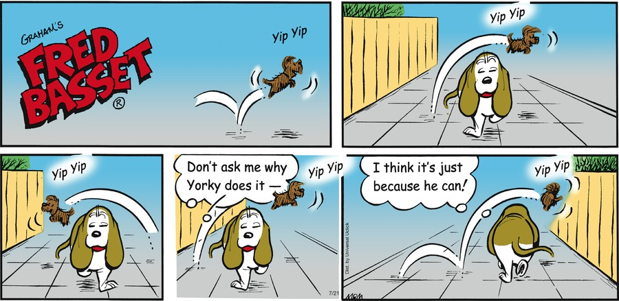 Fred Basset Comic Strip for July 21, 2013