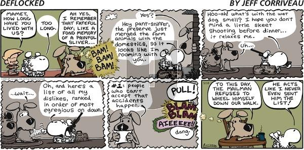 DeFlocked on Sunday May 18, 2008 Comic Strip