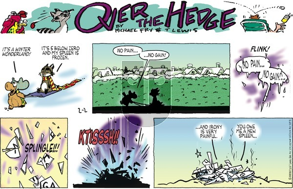 Over the Hedge on Sunday February 2, 2020 Comic Strip