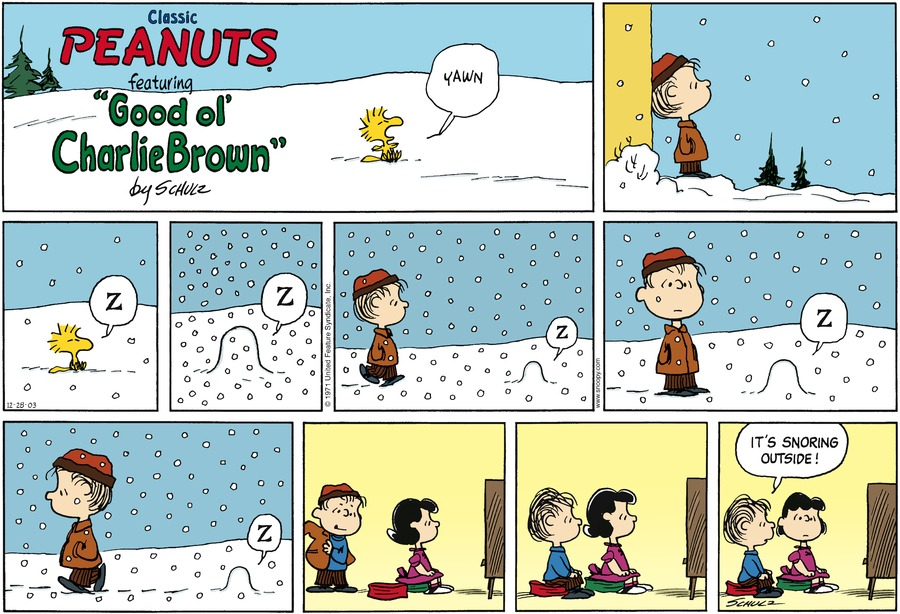 Peanuts Comic Strip for December 28, 2003