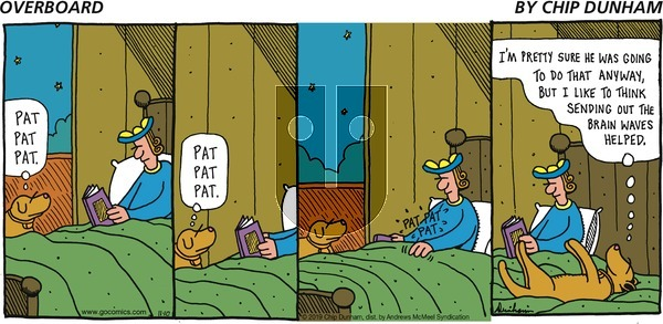 Overboard on Sunday November 10, 2019 Comic Strip