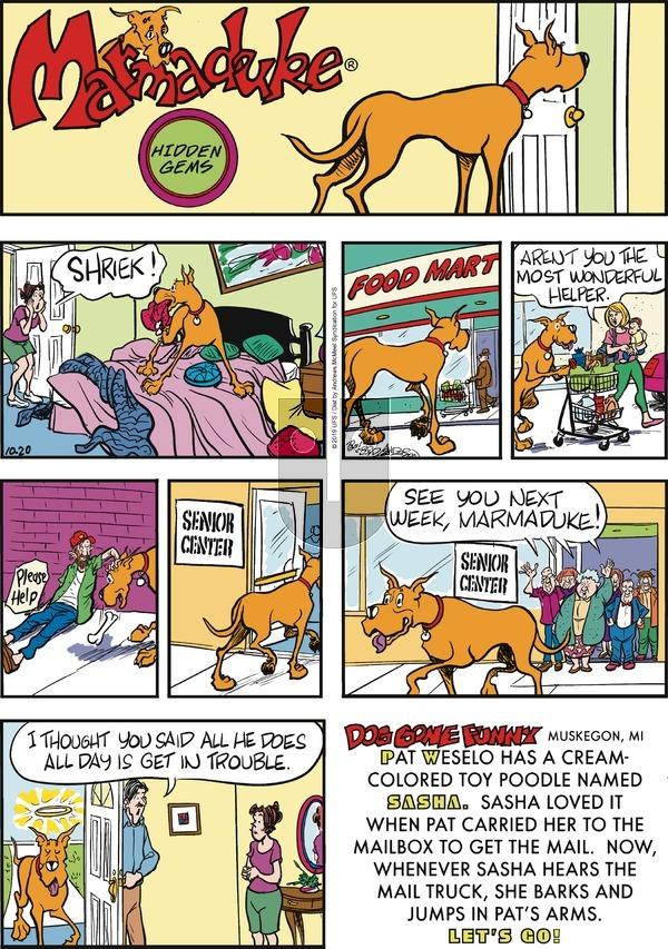 Marmaduke - Sunday October 20, 2019 Comic Strip