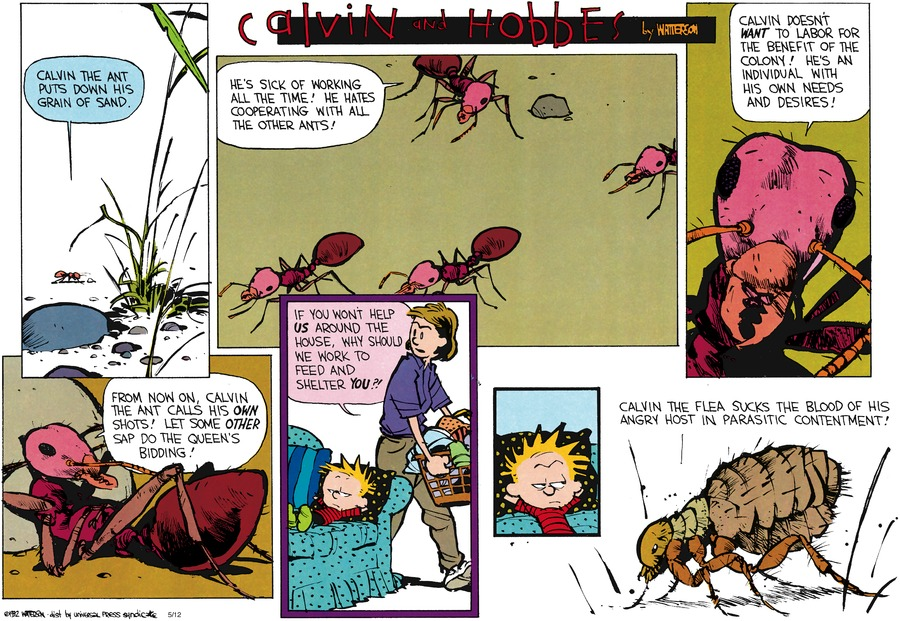 Calvin and Hobbes Comic Strip for June 28, 1992