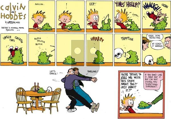 Calvin and Hobbes - Sunday May 5, 2013 Comic Strip