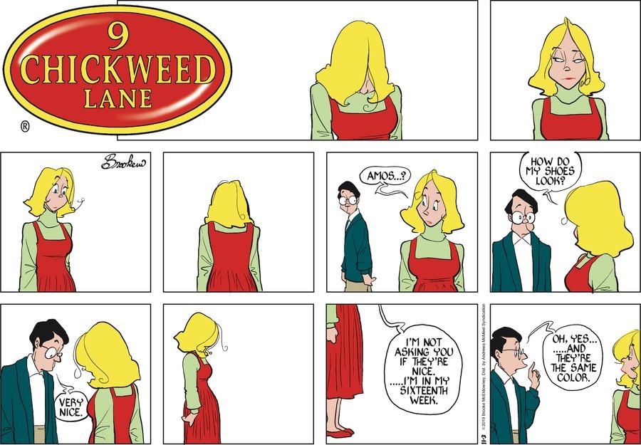9 Chickweed Lane Comic Strip for November 03, 2019