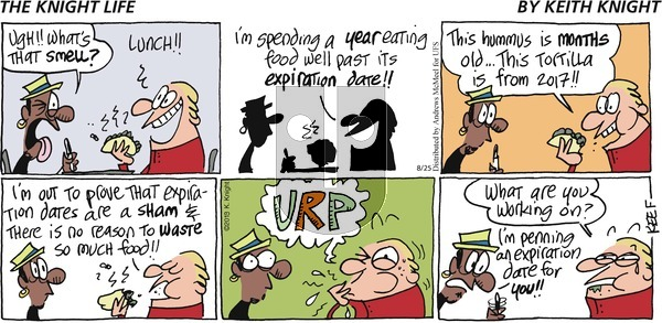 The Knight Life - Sunday August 25, 2019 Comic Strip