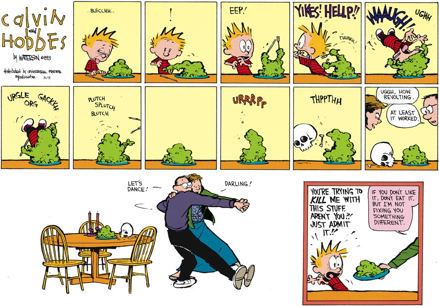 Calvin and Hobbes for May 5, 2013 Comic Strip