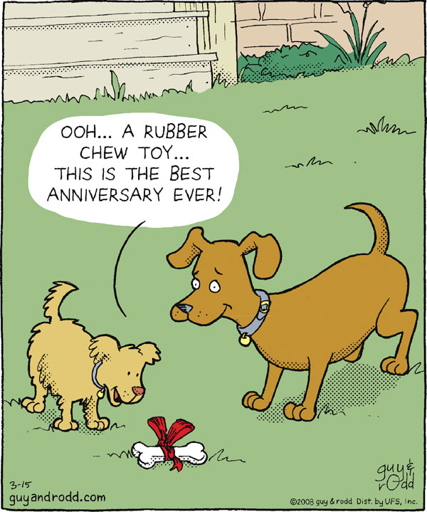 Ooh...A rubber chew toy...This is the best anniversary ever!