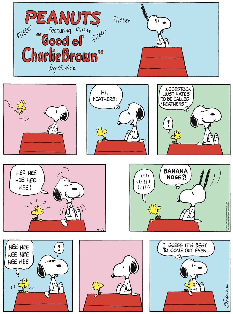 Peanuts Comic Strip for November 17, 2019