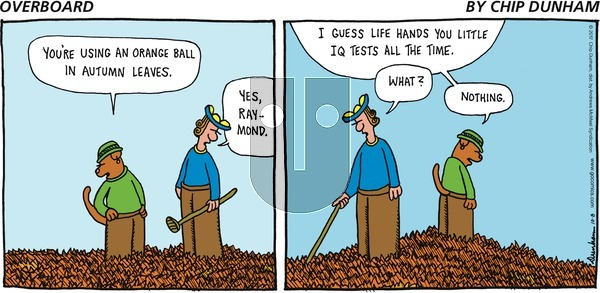 Overboard on Sunday October 8, 2017 Comic Strip