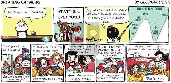 Breaking Cat News on Sunday December 27, 2020 Comic Strip