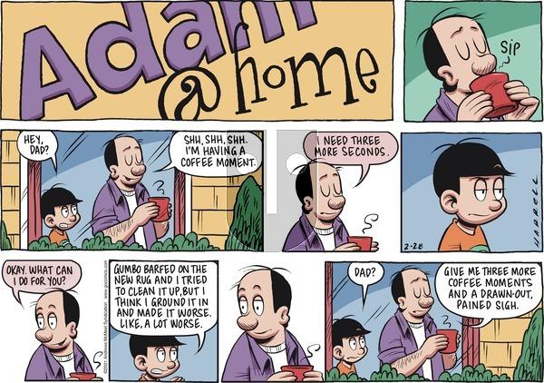 Adam@Home - Sunday February 28, 2021 Comic Strip