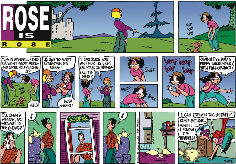 Rose is Rose Comic Strip for May 22, 2016