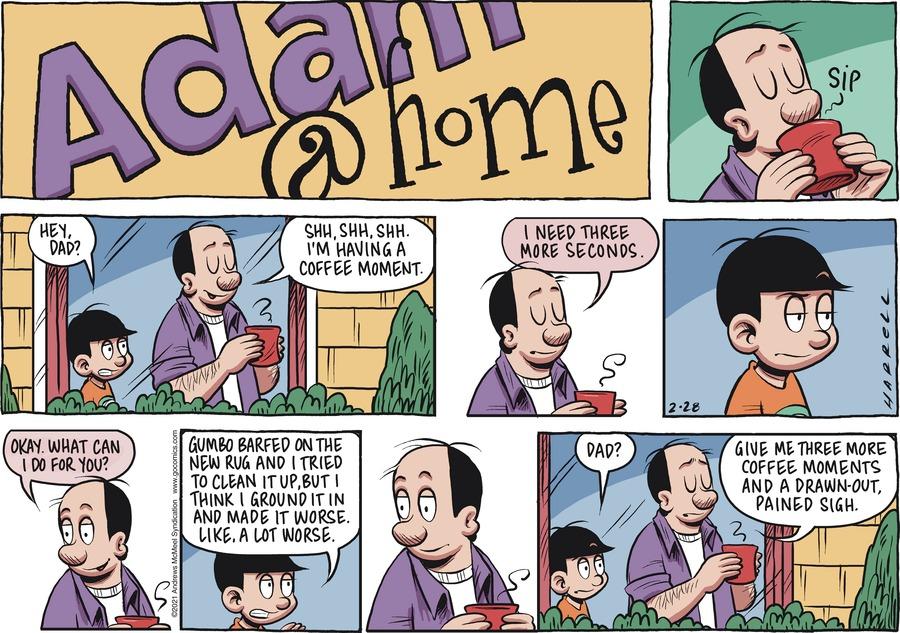 Adam@Home Comic Strip for February 28, 2021