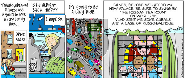 The Big Picture on Thursday December 12, 2019 Comic Strip